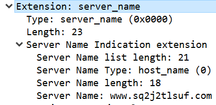 The Tor TLS handshake includes the server_name extension with a fake domain name.